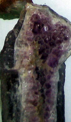 The Mineral Amethyst