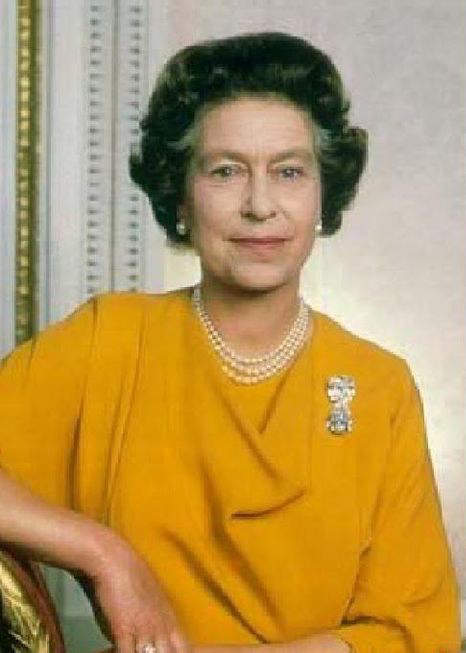 another-occasion-the-queen-was-seen-wearing-grannys-chips