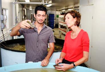 Drs. Megan Davis and Héctor Acosta-Salmón